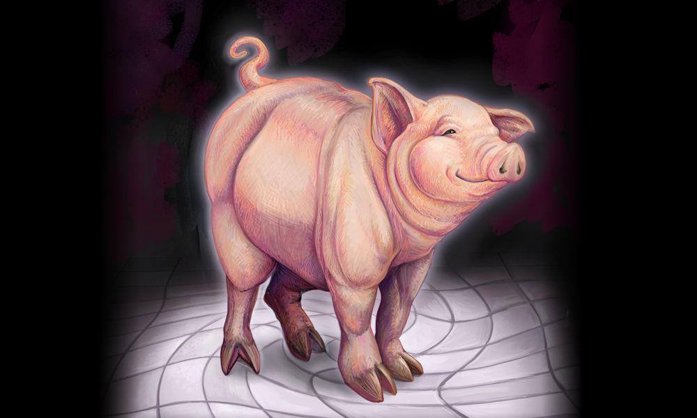 The Transcendent Pig