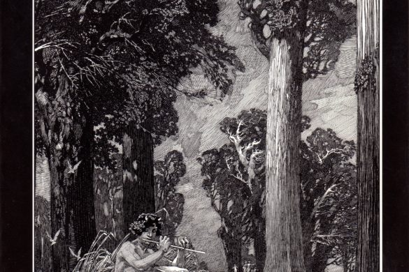 Cover of 'Franklin Booth, Painter with a Pen'