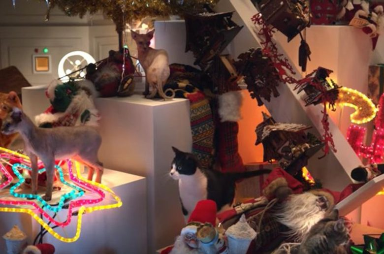 cats-destroy-christmas-2